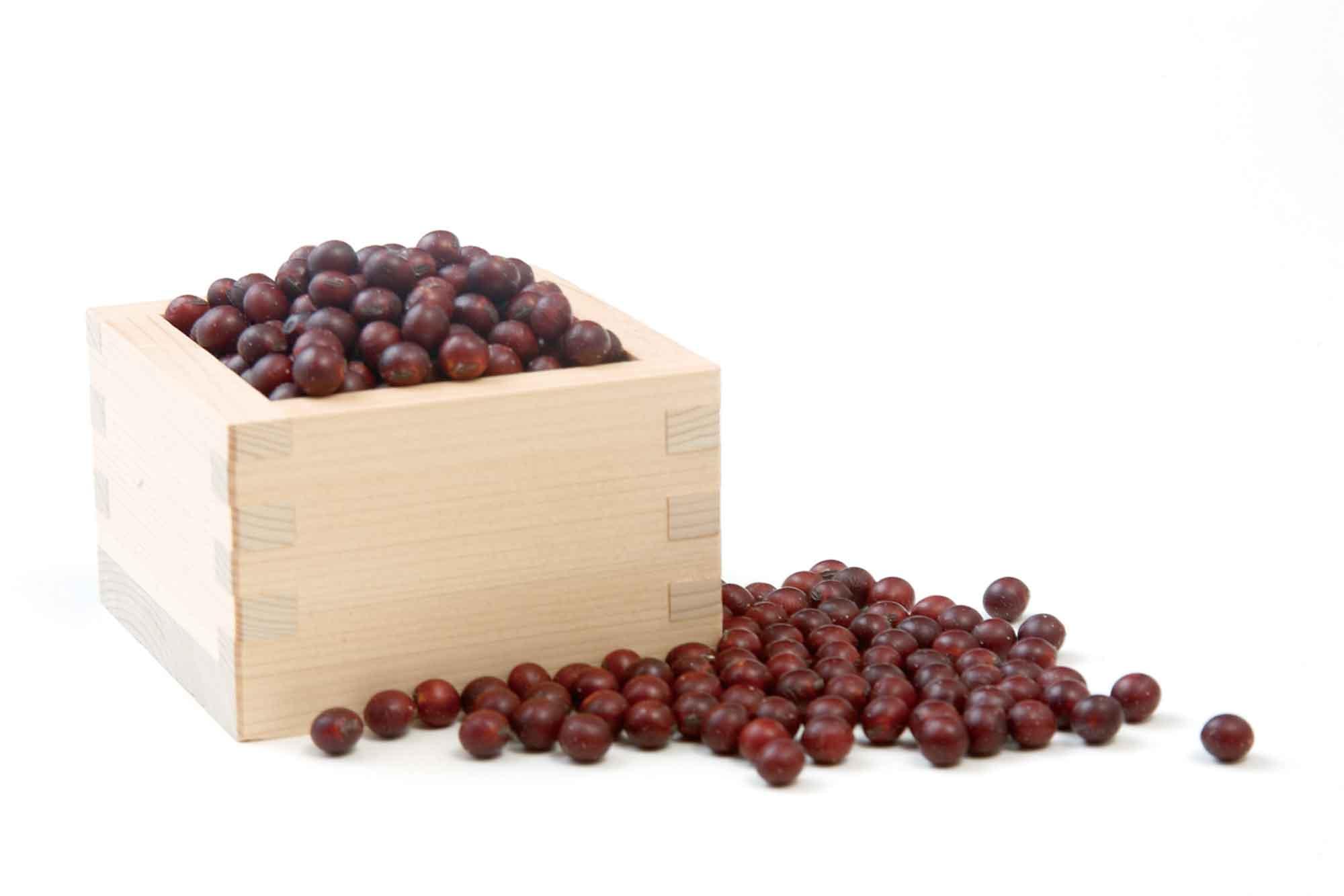 山形県アンテナショップおいしい山形 つくり手を訪ねて|有限会社酢屋吉正:                 川西町特産の貴重な紅大豆。甘みが特長で、味噌のほか煮豆もおいしい。もちもちっとした煮豆は女性に人気。
