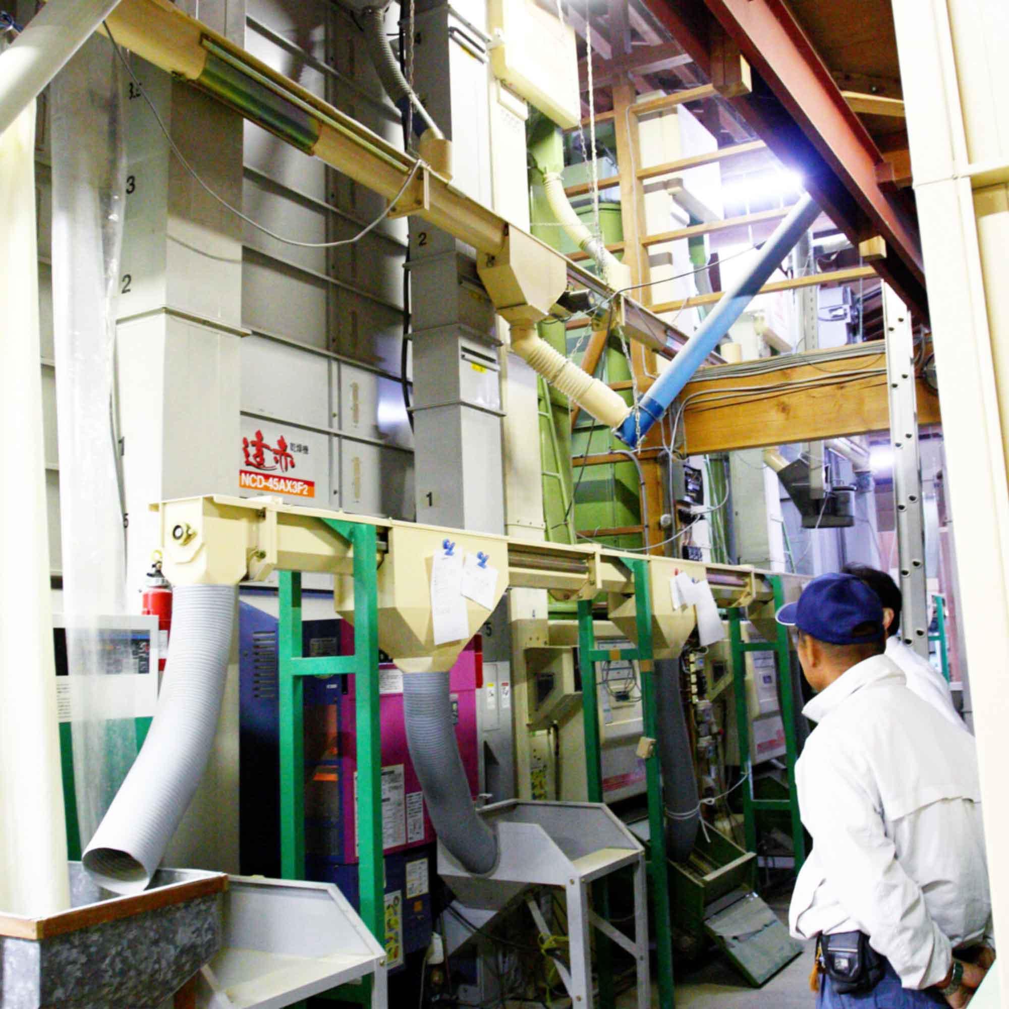 山形県アンテナショップおいしい山形 素材を訪ねて|株式会社マルハチ:                 刈り取った籾は、低温でじっくり仕上げます。